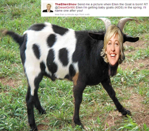 Ellen-the-Goat